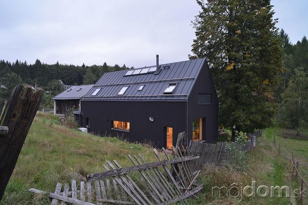 drevená čierna fasada domu