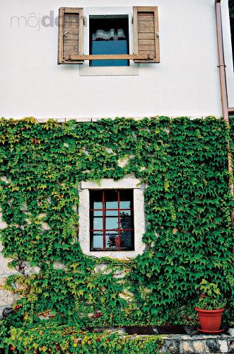 Vkusná fasáda domu -