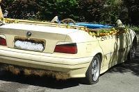 BMW ako pojazdný bazén