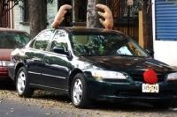 Ako si vyzdobiť auto