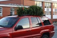 stromček na aute