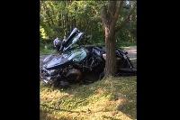McLaren skončil pod stromom