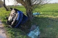 Náraz do stromu vodič