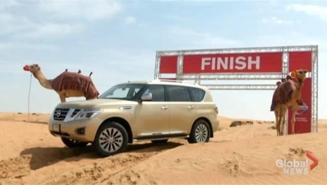 Nissan Camel Power