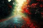 Jeseň vie byť krásna,