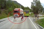 Volvo vs Kid