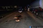 Nehoda chodec Hrnčiarovce nad