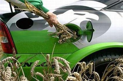 Biopalivá sú na Slovensku
