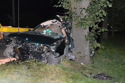 BMW nabúralo do stromu.