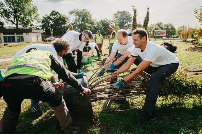 Škodováci sadili stromy