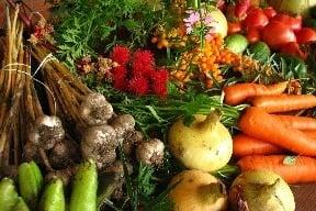 Maminy, skladujte zeleninu správne,