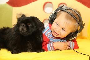 Pes do rodiny =