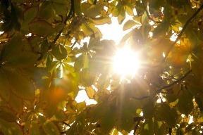 Slnka je menej, nezabúdajte