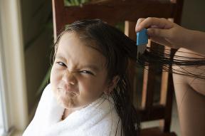 Týchto 7 príznakov vší