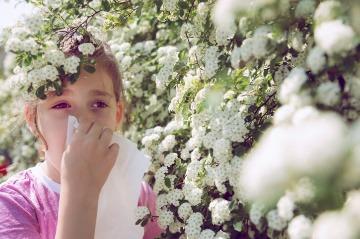 Výsledok vyhľadávania obrázkov pre dopyt Ako bojuje med proti alergiam