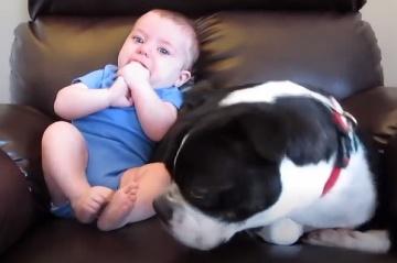 Prdiaci drobček je vtipný,