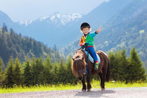 Hop na koníka: Kedy