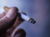 Fajčenie má na svedomí