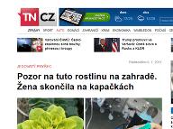 Zdroj: TN.cz