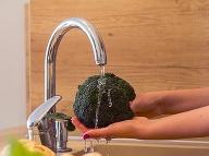 Brokolica je bohatým zdrojom