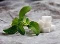 Stevia cukrová je zdravým sladidlom!