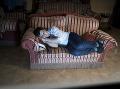 Ako ovplyvňuje svetlo z televízie na náš spánok? Je to vôbec zdravé?