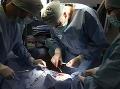 Operácia prasaťa