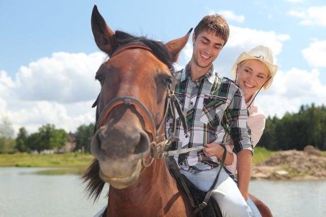 a5d5a5578 Môže nás kôň skutočne vyliečiť? Spoznajte pravdu | Vyšetrenie.sk