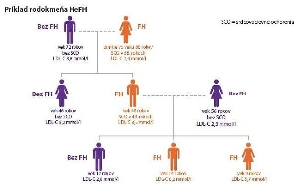 Hererozygotná FH ovplyvňuje celú