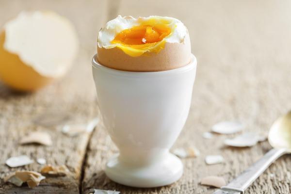 Vajíčko je bohatým zdrojom
