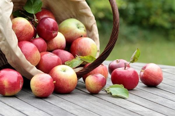 Dve jablká denne ako