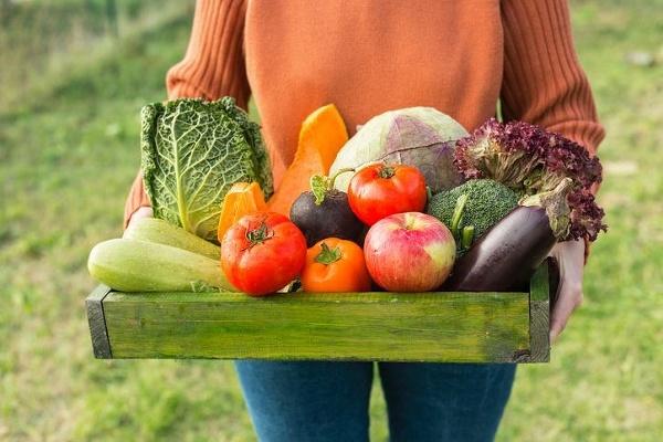 Biopotraviny a ich skrytý