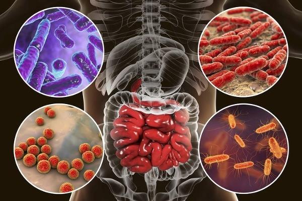 Užívate probiotiká po antibiotickej