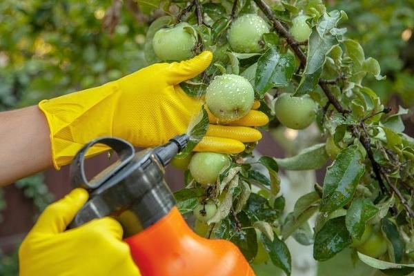 Bežné pesticídy používané v