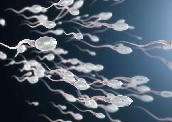 Najhoršia plodnosť v celej