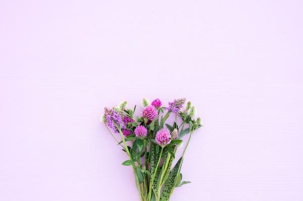 Kvitnúca BURINA so skrytými