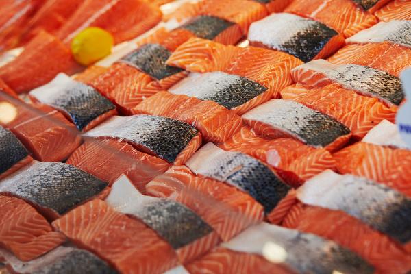 Ryba plávajúca v mori