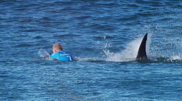 Slávneho surfera napadol žralok,